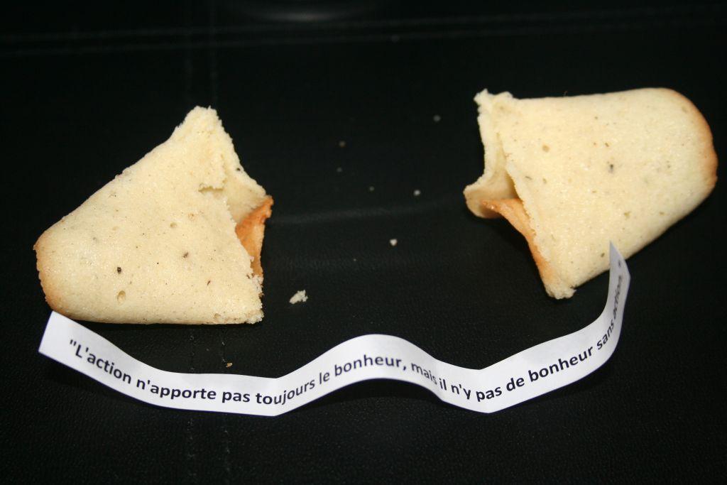 Fortune Cookies 5