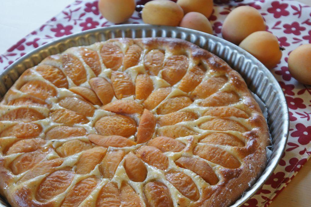Tarte briochée aux abricots 3